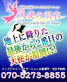 天使の羽衣